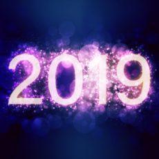 Nous vous souhaitons une année 2019 pleine d'enthousiasme, d'échanges et de projets.
